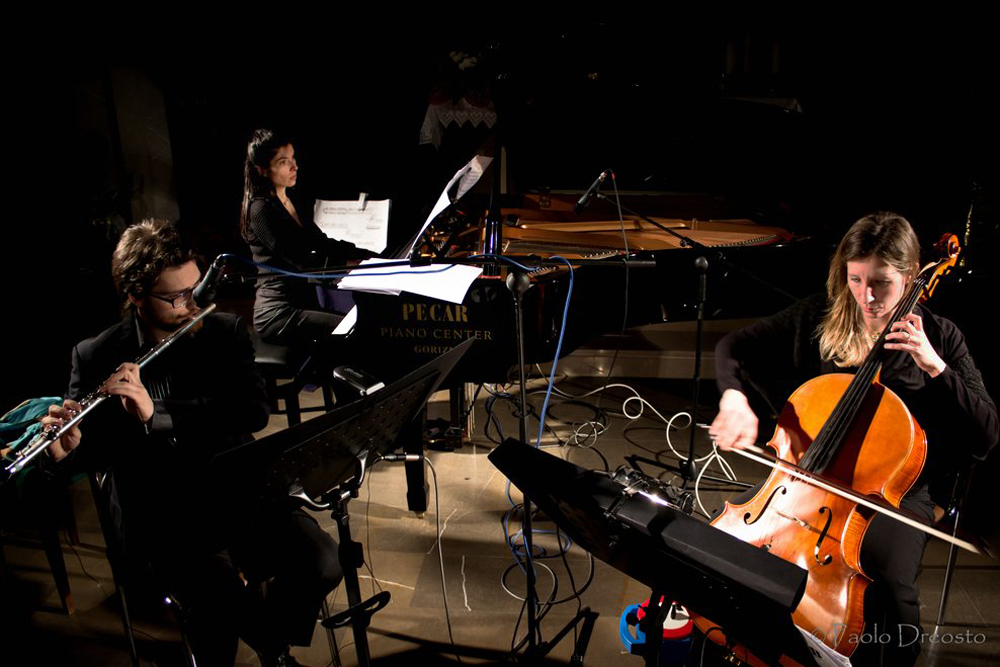 TRIO VOX BALENAE flute, cello and piano